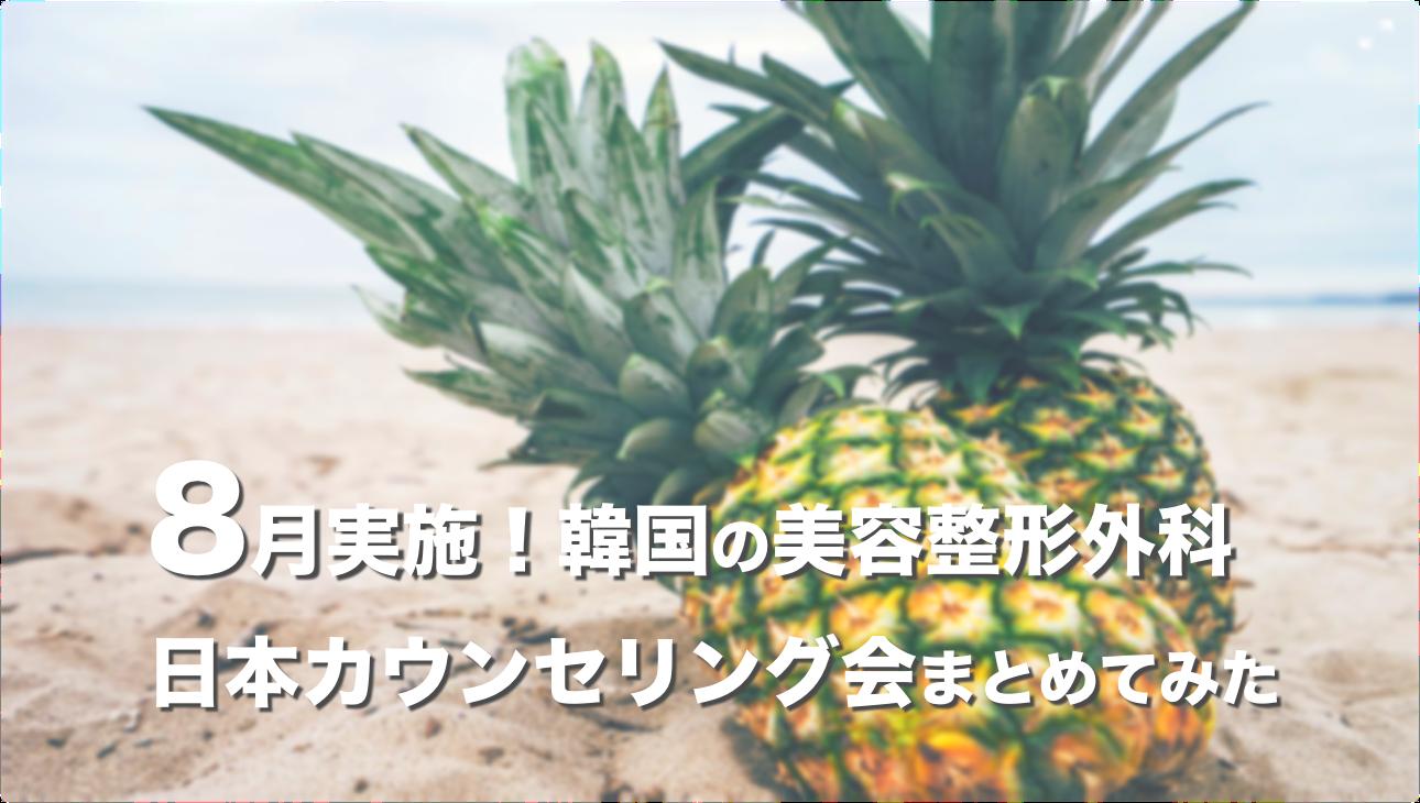 【2019年8月】韓国の美容整形外科が実施する日本カウンセリング会まとめ