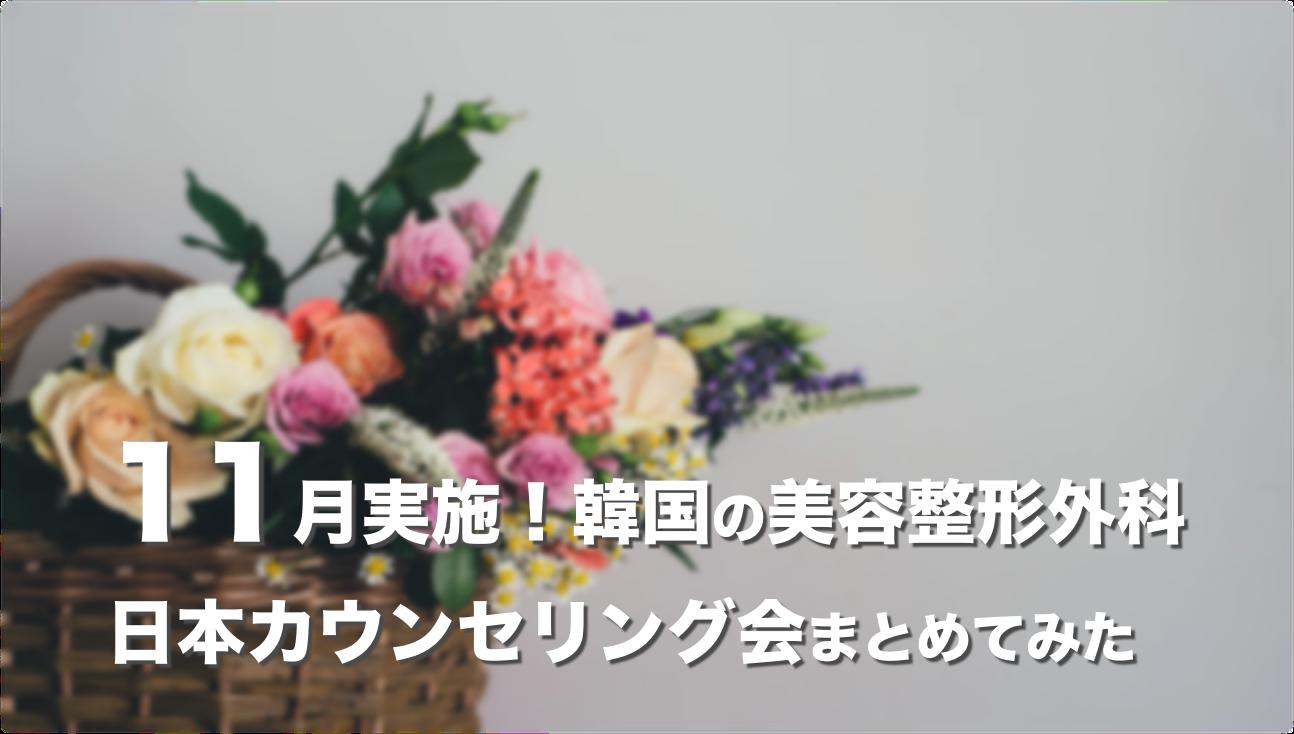 【2019年11月】韓国の美容整形外科が実施する日本カウンセリング会まとめ