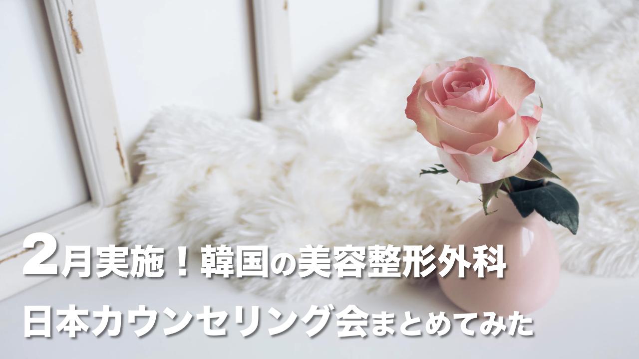 【2020年2月】韓国の美容整形外科が実施する日本カウンセリング会まとめ🇰🇷